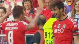 GOLO! SL Benfica, André Gomes aos 59', SL Benfica 1-0 Vitória FC