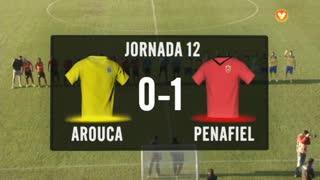 I Liga (12ªJ): Resumo FC Arouca 0-1 FC Penafiel