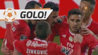 GOLO! SL Benfica, André Almeida aos 12', SL Benfica 1-0 Belenenses