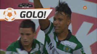 GOLO! Sporting CP, Matheus Pereira aos 30', Sporting CP 3-0 GD Chaves