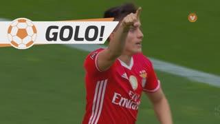 GOLO! SL Benfica, F. Cervi aos 11', SL Benfica 1-0 Vitória SC