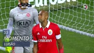 SL Benfica, Jogada, Luisão aos 55'
