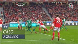 SL Benfica, Caso, A. Zivkovic aos 43'
