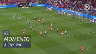 SL Benfica, Jogada, A. Zivkovic aos 65'