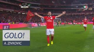 GOLO! SL Benfica, A. Zivkovic aos 87', SL Benfica 6-0 Vitória FC