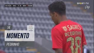 SL Benfica, Jogada, Pedrinho aos 14'