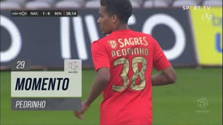 SL Benfica, Jogada, Pedrinho aos 29'