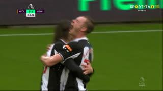 GOLO! Newcastle, J. Hendrick aos 41', Wolverhampton 1-1 Newcastle