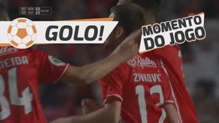 GOLO! SL Benfica, A. Zivkovic aos 54', SL Benfica 2-2 Estoril Praia