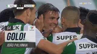 GOLO! Sporting CP, João Palhinha aos 64', Sporting CP 3-0 FC P.Ferreira