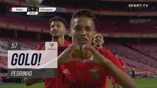 GOLO! SL Benfica, Pedrinho aos 57', SL Benfica 5-0 Vilafranquense