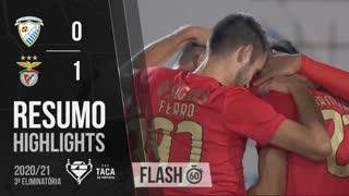 Taça de Portugal (3ª Eliminatória): Resumo Flash Paredes 0-1 SL Benfica